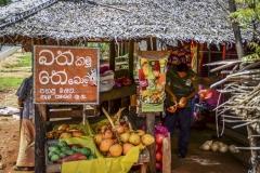 Travel-Sri-Lanka-9479