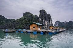 DSC_1197-Vietnam-Ha-Long-Bay-UNESCO-170413