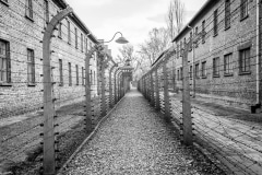 DSC_8347-Auschwitz-German-Concentration-Camp-180104